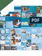 Identifying Pirdvd English