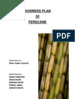Sugar Cane -Business Plan