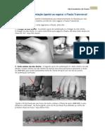 Pontos de sustentação (apoio) ao segurar a Flauta Transversal