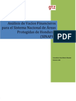 Documento Final Analisis Vacios Financieros Sinaph 2 (2)