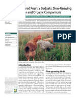 Pastured Poultry Budgets