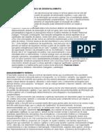 BRINCAR Processo Dinamico de Desenvolvimento[1]