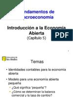 5-Economia_Abierta