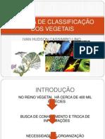 SISTEMA DE CLASSIFICAÇÃO DOS VEGETAIS