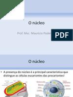 O núcleo