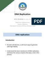 DNA Replication 2012
