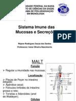 imunidadenasmucosasesecrees-100521063101-phpapp01