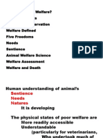 Animal Welfare Course