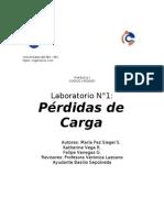 informe 1 hidraulica 2012-1