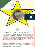 _CETAM - INTRODUÇÃO A NUTRIÇÃO - MODULO 1.pdf