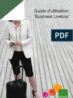 Business Livebox 20080131[1]