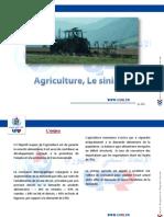 L'agriculture en Tunisie