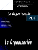 Presentacion Organizacion