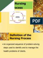 The Nursing Process - Care Plan 4 (1)