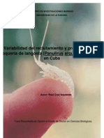 Variabilidad Del Reclutamiento y Pronostico de La Pesqueria de Langosta Panulirus Argus Latreille 1804 en Cuba 0