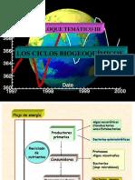 Ciclos Biogeoquímicos 1