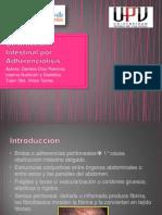 Caso Clínico Adherenciolisis
