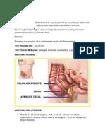 Patologias Qx Clasicas Final