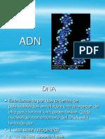 Adn y Sintesis de Adn