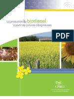 La production de biodiesel à partir de cultures oléagineuses