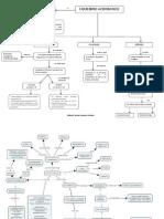 mapas conceptuales riñón