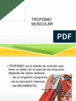 Trofismo Muscular