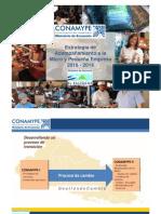 Estrategia de Acompaamiento a La Micro y Pequea Empresa 2010-2014