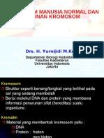 KromosomManusiaNormaldanAbnormalitas