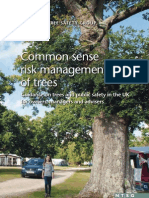Common Sense Risk Management of Trees National Tree Safety Group
