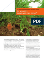 Revista AgroQuimica-La escasez de fitosanitarios en los cultivos menores La solución, ¿cada vez más cerca?