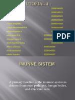 Imunne Sistem