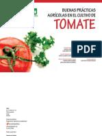 Buenas Practicas Agricolas en El Cultivo de Tomate