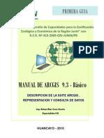 Manual Arcgis1