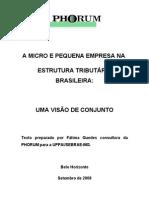 A MICRO E PEQUENA EMPRESA NA ESTRUTURA TRIBUTÁRIA BRASILEIRA