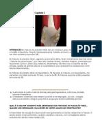 Fracturas Do Planalto Tibial