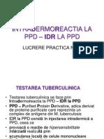 Intradermoreactia La Ppd _ Idr La Ppd