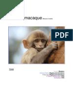 Monkey Dissertation