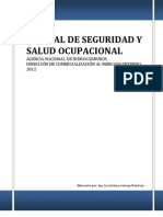 Manual de Seguridad y Salud Ocupacional ANH
