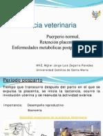 0016-Puerperio Normal y Retencion Placentaria 016
