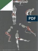 Gottfried Bammes - Die Gestalt Des Menschen - Anatomy & Visual Arts - 1-3