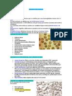 Anemias microciticas
