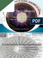 Fundamentos de la neuropedagogía