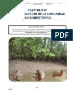 Comunidad Macrobentónica del Sector Occidental de la Bahía de Jiquilisco