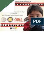 Niños y niñas de los pueblos indigenas de Chile e inmigrantes. Sebastián, un niño descendiente kawésqar. En Puerto Edén