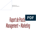 Raport de Practica Management-Marketing