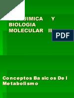 Clase #01 - Conceptos Basicos Del Metabolismo (1p)