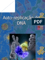 Auto_replica§£o_do_DNA_aula