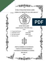 Laporan Praktikum BK Karir (Agus, Budi, Novi, Dewi)