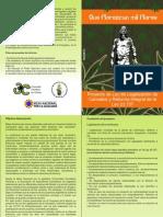 Panfleto Proyecto Ley Legalizacion