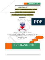 6248608 Summer Training Project Report on Idbi Bank